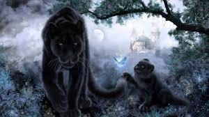 baby jaguar wallpaper. Beautiful Jaguar Black Jaguar With Baby  Download HD Wallpapers Photos In Wallpaper