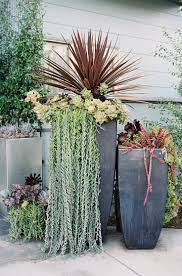 25+ beautiful Succulent containers ideas on Pinterest | Succulents in  containers, Succulent containers ideas and Suculent plants