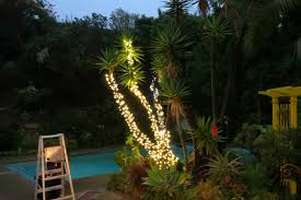 outdoor tree lighting ideas. How To Wrap Trees With Outdoor Lights Inspiration Of Tree Lighting Ideas L