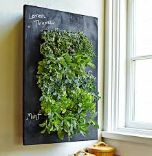 Herb Kitchen Garden Kitchen Garden Wall Twerp