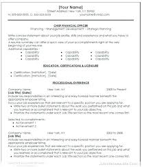 Cfo Resume Template Custom Resume Sample Old Version Old Version Best Resume Samples Resume