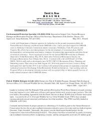 Local Resume Services Resume Services Stunning Contemporary Simple 5
