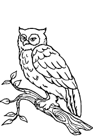 Coloring Pages Forest Animals Forest Animals Coloring Pages Rome Fontanacountryinn Com