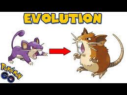 Rattata Evolution Chart Evolving Rattata To Raticate Pokemon Go Evolution Youtube