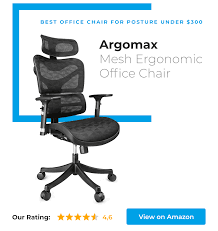 coolest office chair. Argomax Is Best Office Chair For Posture Under $300 Coolest S