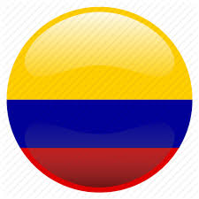 Image result for colombia flag