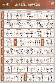 Workout Chart Details About Barbell Workout Exercise Poster Bodybuilding Guide Fitness Gym Chart