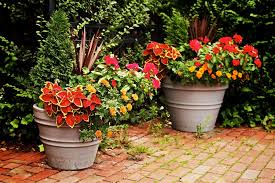 container gardening for beginners. Creative Container Gardening For Beginners