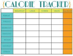 Calorie Log Sheet Magdalene Project Org
