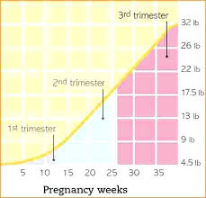 Pregnancy By Weeks Calendar Appropriate Pregnancy Weight Gain Chart For My Size Calendar Week