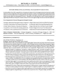Resume Executive Summary Template. gallery of resume executive .