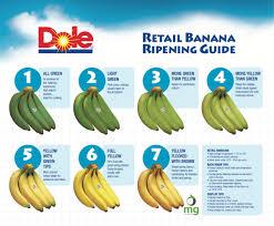 Banana Ripening Chart Related Keywords Suggestions