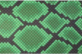 Snake Skin Pattern Gorgeous Core Holster In Green Snake Skin Pattern