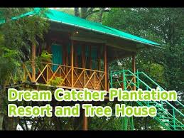 Dream Catcher Kerala Dream catcher plantation resort and tree house YouTube 100
