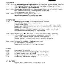 A Cashier Resume How To Make A Resume For A Cashier Position Resume