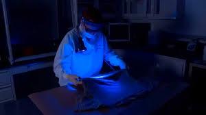 Alternate Light Source Forensics Blue Light Screening Youtube