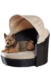 Outdoor Dog Canopy Bed | Activities | Outdoor dog bed, Pet beds ...