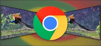 Image Sample The Verge How To Save Googles Webp Images As Jpeg Or Png