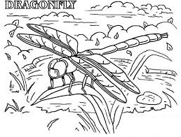Small Picture Dragonfly Rainforest Insect Animals Coloring Page Dragonfly