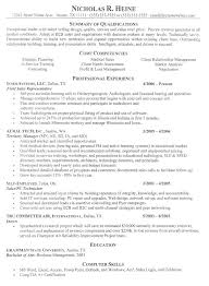 Examples Of Professional Resumes Stunning Resume Examples It Professional 48 Of Resumes And Free