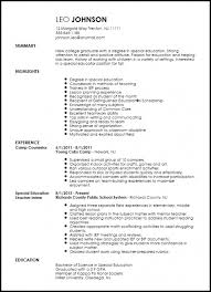 Download Now Sample Special Education Teacher Resume Elementary