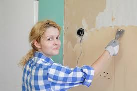 removing mold from wallpaper is it