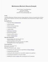 18 Most Popular Resume No Experience Template Free Resume