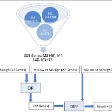 M4 Chart Data And Process Flow Chart For Use Case 2 Input Files M2