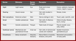 Sensation Chart