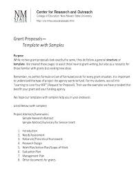 Sample Non Profit Proposal New Funding Template Gallery