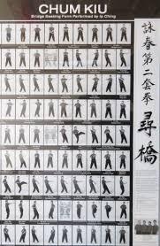 Ip Ching Wing Chun poster