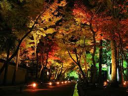 Orange Garden Lights 20 Astonishing Led Landscape Lights Photos Landscape Ideas