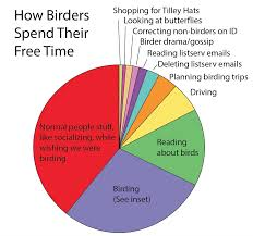 The Birders Conundrum Pie Chart How Birders Spend Their