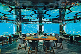underwater restaurant disney world. Underwater Restaurant Disney World
