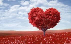 57+] Valentines Desktop Backgrounds on ...