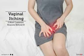 Vaginal Itching - 5 Most Common Reasons Behind It! - By Dr. Shubhada ...