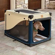 large dog travel crate