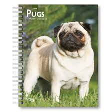 pugs 2019 planner calendars books gifts