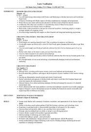 Digital Strategist Resume Creative Strategist Resume Samples Velvet Jobs