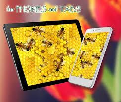 Honey and Bee live wallpaper APK ...
