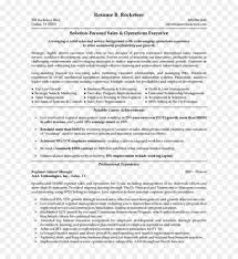 Resume Executive Summaries Executivemmary Template Resume Writing For Format Sample