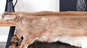 deer hide rug modern area rugs on zebra rug and awesome deer hide deer hide rug
