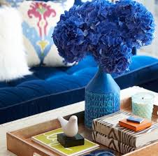 Living Room Feng Shui Colors Feng Shui Color Tips To Create A Beautiful Home