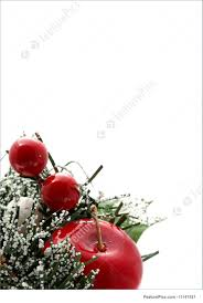 Holidays Vertical Christmas Apples Stock Photo I1141521 At