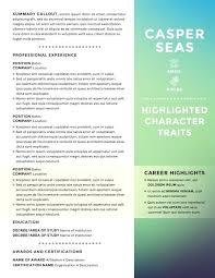 kick ass resume seas resume template resume builder
