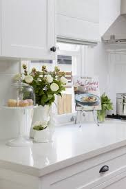 Kitchens With White Countertops 17 Best Ideas About White Quartz Countertops On Pinterest Quartz