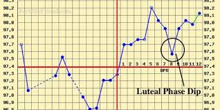 Ovulation Dip Bbt Chart Implantation Dip Study