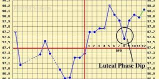 Implantation Dip Study