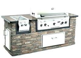 outdoor grill grills review natural gas built in for kitchenaid costco 4 burner liqui outdoor grill charcoal reviews cart style review kitchenaid