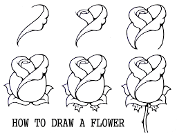 easy to draw flowers   Daryl Hobson Artwork: How To Draw A Flower Step By